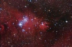 komplicerat nebular Arkivfoto