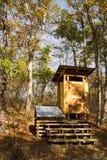 Komponować Wtajemniczony na Appalachian śladzie Fotografia Stock