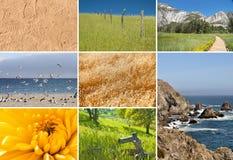 Komposit av naturbilder Arkivbild