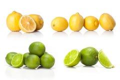 Komposit med grön den isolerade limefrukt och gulingcitronen Royaltyfri Fotografi