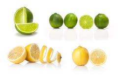 Komposit med grön den isolerade limefrukt och gulingcitronen Arkivfoton