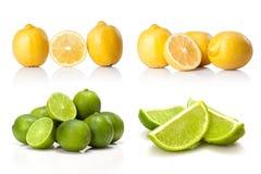 Komposit med grön den isolerade limefrukt och gulingcitronen Royaltyfria Foton