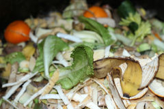 kompost zdjęcia stock