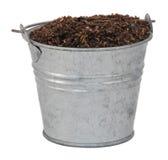 Kompost/Boden/Schmutz in einem Miniaturblecheimer Stockfotografie
