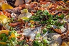 Kompostfack i tr?dg?rden Composting av h?gen av ?gg-, frukt- och gr?nsakrester royaltyfria bilder