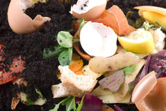 Kompostierung lizenzfreies stockfoto