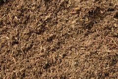 komposttäckning 2 Arkivbild