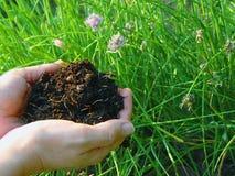 komposttäckningrich Royaltyfri Fotografi