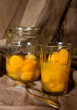 Kompott av torkade aprikors fotografering för bildbyråer