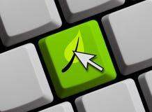 Komputerowa klawiatura: Eco pojęcie obrazy royalty free