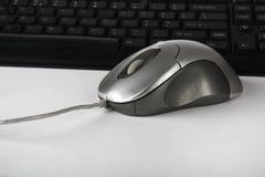komputerowa mysz Fotografia Royalty Free