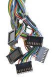 Komputerowi związków kable, prymki i Zdjęcie Royalty Free