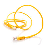 Komputerowy etherneta kabel na białym tle Fotografia Stock