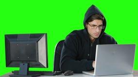 Komputerowy hacker używa komputery zbiory