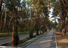 Komsomolsk Gorishni Plavni Κατά μήκος των αλεών του πάρκου πόλεων Στοκ Εικόνες