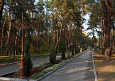 Komsomolsk Gorishni Plavni Le long des allées du parc de ville Images stock