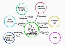 Komunikacje weterynarz Z innymi usługami ilustracji