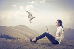 komunikacyjna wolność Zdjęcie Stock