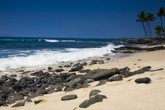 Kona Coastline Royalty Free Stock Photo