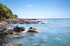 Kona Hawaii Reef Royalty Free Stock Photo