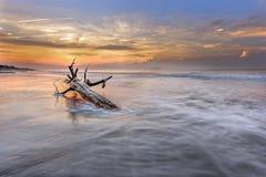 Konar na plaży zdjęcia royalty free