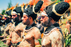 Koncentracja w Papua - nowa gwinea zdjęcie royalty free