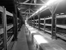 Koncentracyjny Auschwitz obóz Obraz Royalty Free