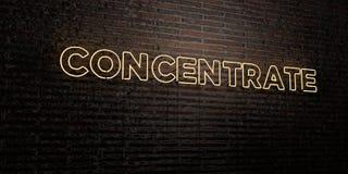 KONCENTRAT - Realistyczny Neonowy znak na ściana z cegieł tle - 3D odpłacający się królewskość bezpłatny akcyjny wizerunek ilustracji