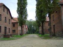 Koncentrationsläger Arkivbild