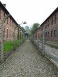 Koncentrationsläger Arkivfoto