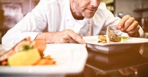 Koncentrerad manlig kock som garnerar mat i kök fotografering för bildbyråer