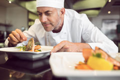 Koncentrerad manlig kock som garnerar mat i kök Royaltyfria Foton