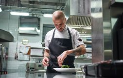 Koncentrerat på arbete Stående av den stiliga yrkesmässiga kocken i svart förkläde som garnerar hans maträtt på plattastunden royaltyfri bild