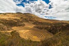 Koncentriska terrasser i Moray, sakral dal, Peru Arkivbilder