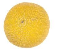 Koncentriskt format gult melonskal royaltyfri fotografi