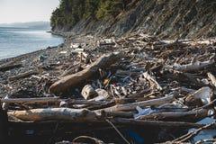 koncepcja ekologicznego Ekologia problemy planety ziemia Banialuki w miejscach odpoczynek morzem Klingeryt butelki w?r?d fotografia royalty free