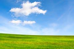 koncepcja ekologii obrazów więcej mojego portfolio Łąkowy i piękny niebo obrazy royalty free