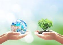 koncepcja ekologii obrazów więcej mojego portfolio Zdjęcie Stock