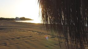 koncepcja plażowy wakacje parasolkę zbiory