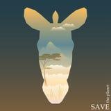 Konceptualna ilustracja na temacie ochrona natura i zwierzęta z wieczór sawanny widokiem w sylwetce zebra przewodzimy Zdjęcie Royalty Free