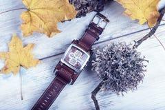 Konceptualnego czasów liści jesieni roku zegarka liszaju godziny strefy Żółtego korka Rzemienna patka zdjęcie stock