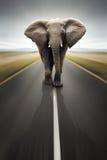 konceptualnego obowiązku ciężka drogowego transportu podróż Fotografia Stock