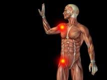 Konceptualny ciało ludzkie anatomii ból na czerni Obraz Royalty Free