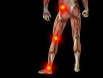 Konceptualny ciało ludzkie anatomii ból na czerni Zdjęcia Royalty Free