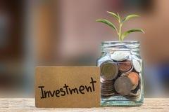 Konceptualny oszczędzanie pieniądze dla inwestyci i interes Zasadzamy growi Fotografia Stock