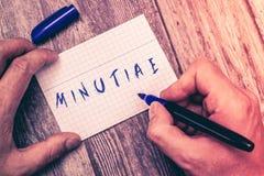 Konceptualny ręki writing pokazuje drogiazgi Biznesowa fotografia pokazuje małych precyzyjnych lub trywialnych szczegóły coś obrazy royalty free