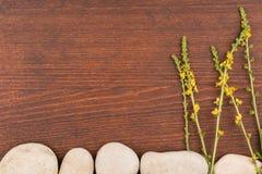 Konceptualny wizerunek dzikich kwiatów dorośnięcie od kamieni Rama na zmroku drewnianym Fotografia Stock
