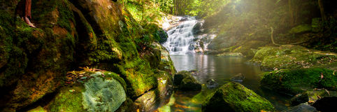Kondalilla Falls of Montville, Sunshine Coast Stock Images