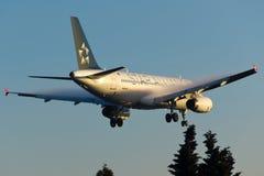 Kondensation Star Alliances Airbus A320 Stockfotos