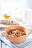 Konditionfrukost med sund mysli och frö Fotografering för Bildbyråer
